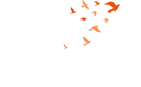 ASIA PACIFIC ALLIANCE FOR DISASTER MANAGEMENT Asia Pacific Alliance for Disaster Management is Trans-national Disaster Aid Platform  for Saving More Lives in Less Time